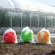 畑でとれたゴミ袋(5枚入)