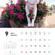 ネコ吉 壁掛けカレンダー2019 [限定販売] A001