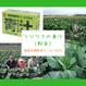フジワラの青汁(粉末)|国産有機野菜ケール100%【有機JAS認定】