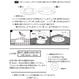 8月2日販売開始!【HA-596】ツメ式のハトメ