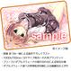 PCソフト「妄想コンプリート!」豪華特典セット版