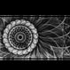 [CD] 廻転楕円体 - 奈落の虹(新装版)