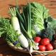 旬の野菜ダンボールぎゅうぎゅう詰め合わせセットMコース
