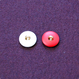 インポートボタン