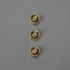 インポートボタン/ストーン付