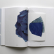 THE ACCIDENTAL FOLD  / SASKIA DE BRAUW
