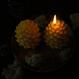 pine cones candle L