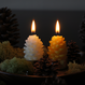 pine cones candle S