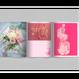 Fanzine137 PINK issue