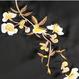 B125 embroidery long shirt