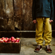【 little cotton clothes 】tenby trousers - mustard chunky cord