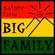 自然農(無農薬・無肥料・不耕起) 生ピーナッツ1kg [BIG FAMILY FARM] made in 佐賀県