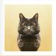 CLOVEN CATS まっぷたつのねこ