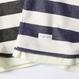 PROJECT SR'ES(プロジェクトエスアールエス) / REFRESHING BORDER HALF C&S(裾レイヤー半袖ボーダーカットソー) / No.KNT01076 / 日本製