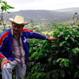 【定期便】ニカラグア サンタフェ農園 200g・豆