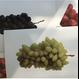 postalco postcard Grapes