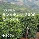 コスタリカ サンタテレサ 2000 カトゥアイ/ 浅煎り (High Roast)