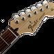 Fender Standard Stratocaster® Rosewood Fingerboard