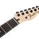Fender Jim Root Telecaster® Ebony Fingerboard / Flat White ( 0717669610555 )