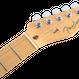 【新製品】Fender American Pro Telecaster® Maple Fingerboard