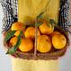 森果樹園のなるとオレンジ10kg