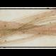 創作デザイン和紙(柿渋)(商品番号:as-160204)