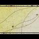 創作デザイン和紙(しぶき)(商品番号:as-1511015)