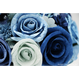 【即日発送可】和紙ラウンドブーケ・青(商品番号:bouquet-002b)