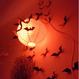 Halloween 12pcs 3D BAT ウォールデコレーション