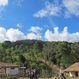 Honduras - Decaf