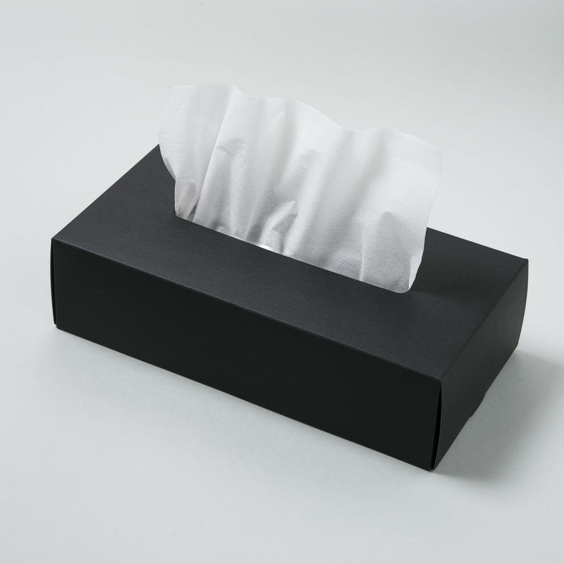 TISSUE BOX CASE【ティッシュ ボックス ケース / ブラック】