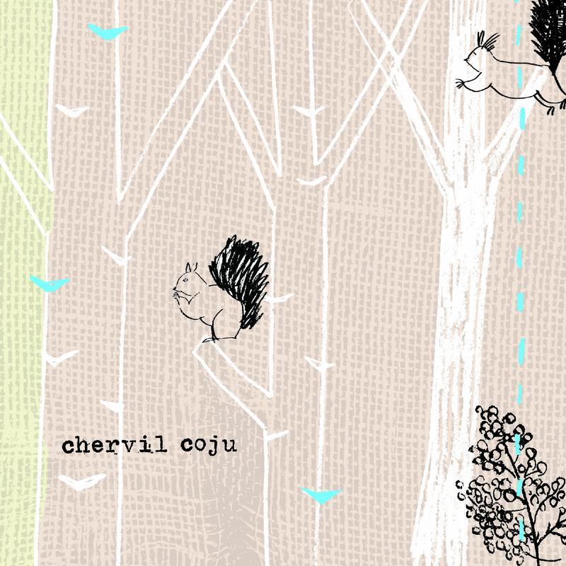 chevil coju(V.A.)