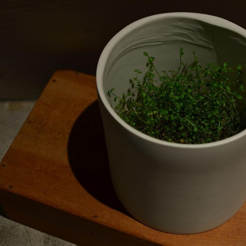 白石陽一さん 花器 筒