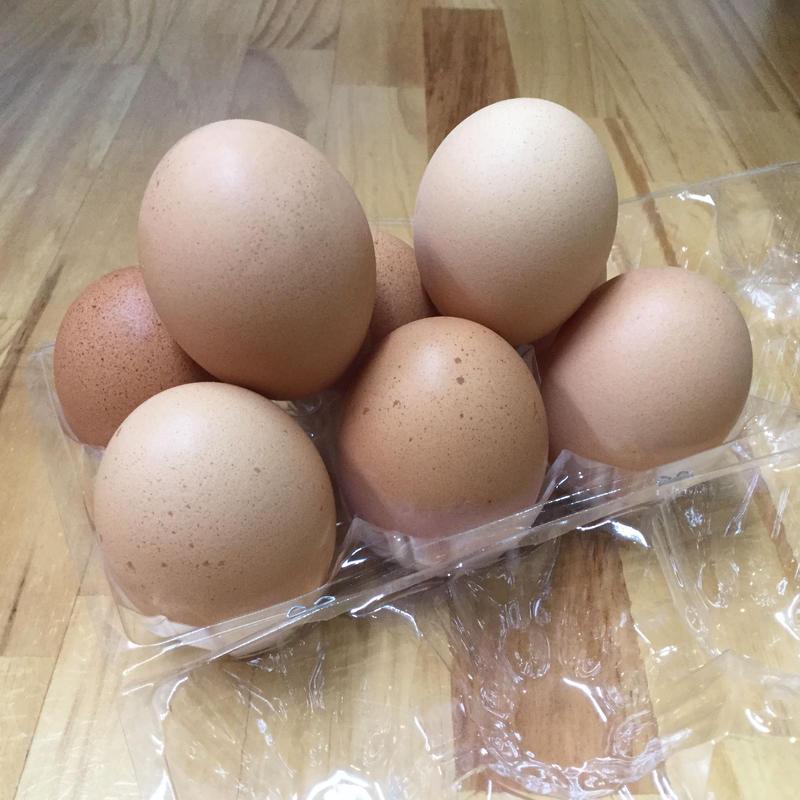 水増八天狗卵 3パック(30個)セット