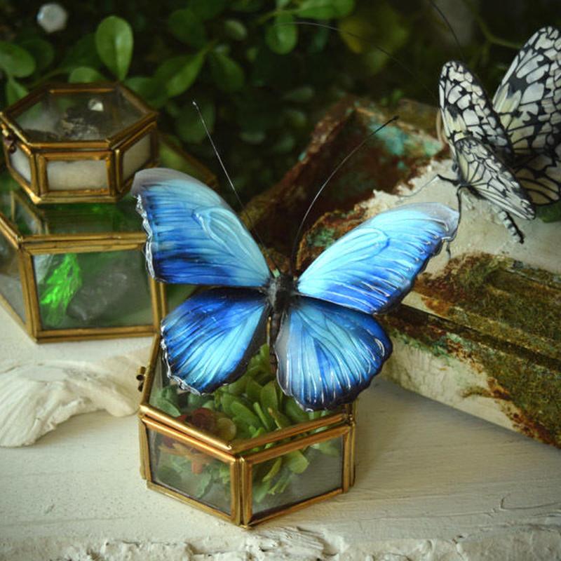 蝶のオブジェ メネラウスモルフォ blue.col Lsize