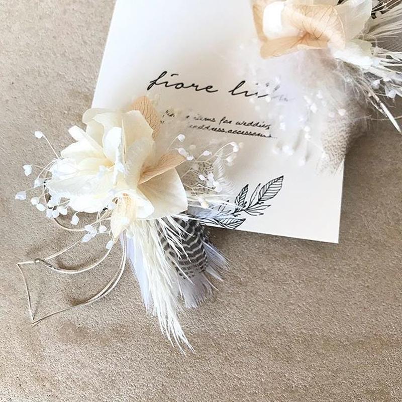ailes-beige