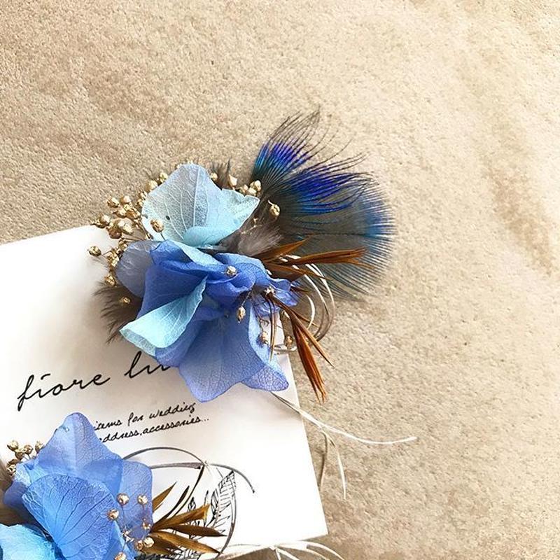 ailes-blue