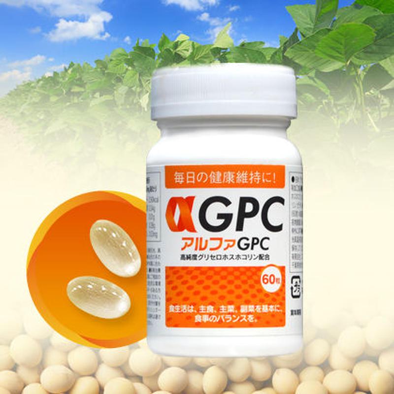 アルファGPC(αGPC)60粒