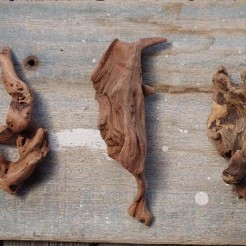 インドネシア産マングローブ流木3本セット−C Drift woods