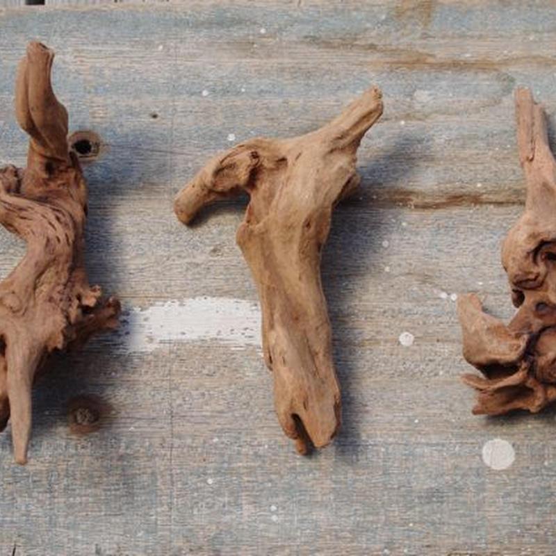 インドネシア産マングローブ流木3本セット−A Drift woods