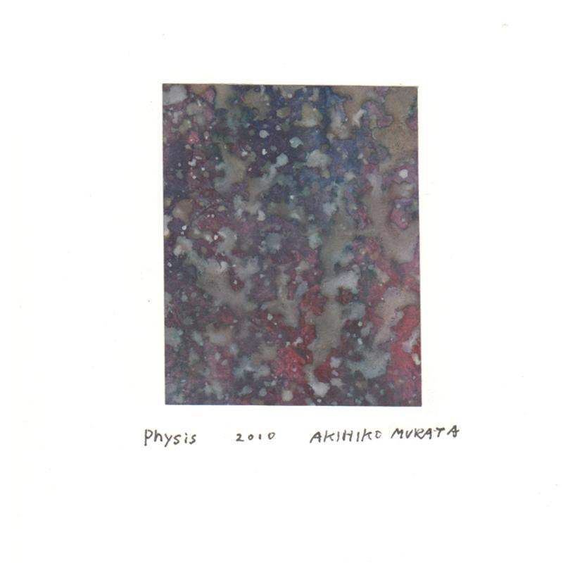 #0012 physis 2010