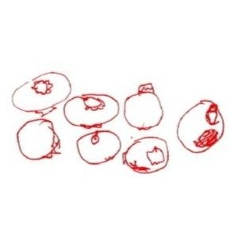 桃とブルーベリー 50g Peche&Myrtille