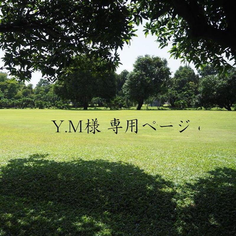 Y.M様専用ページ