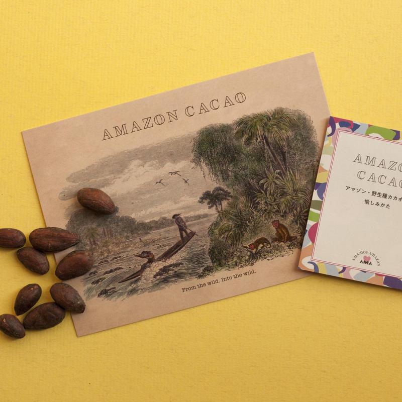 アマゾン野生種カカオ(ロースト豆)