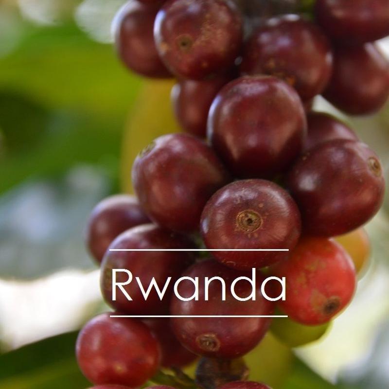 ルワンダ ニャミラマ 200g