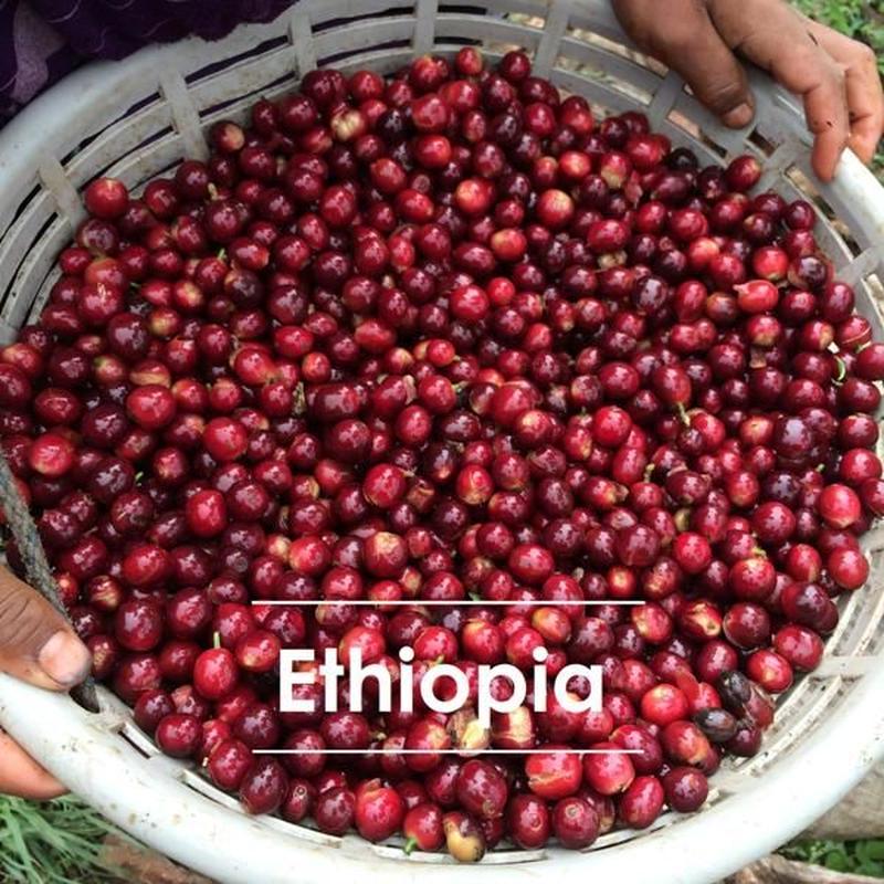 エチオピア ウォテ ナチュラル 200g