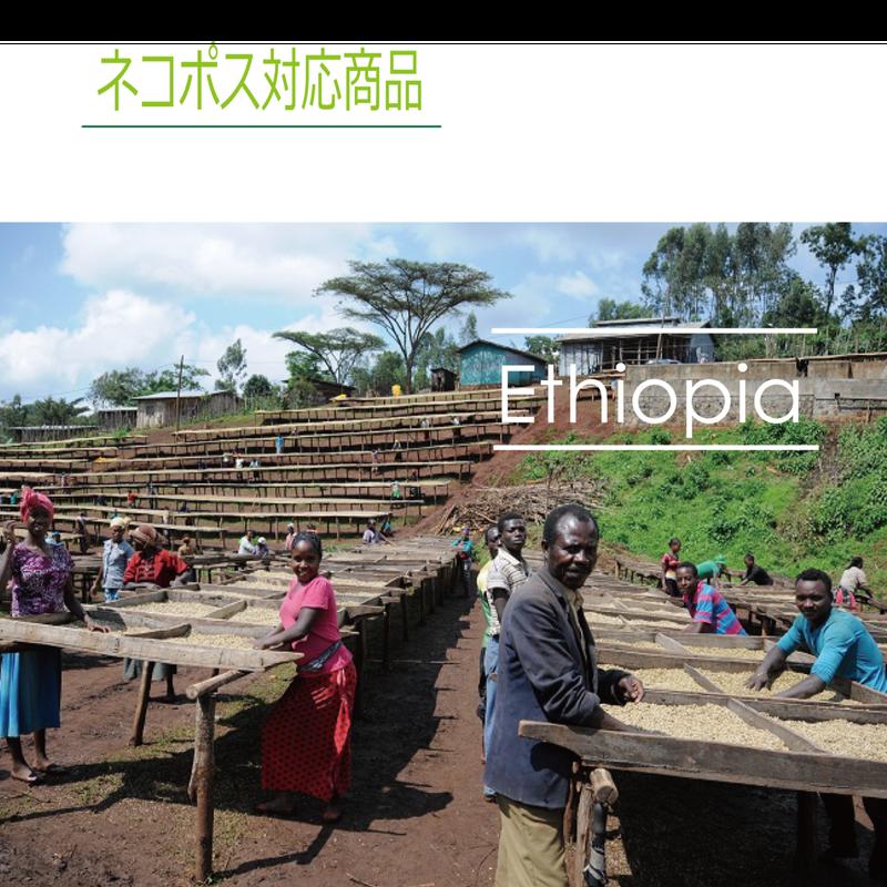 エチオピア タデ GG農園 100g