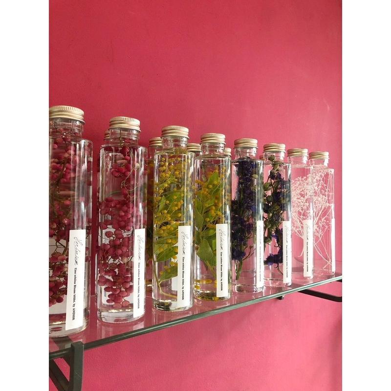Herbarium(ハーバリウム)花の標本・人気の4本セット(BOX付)