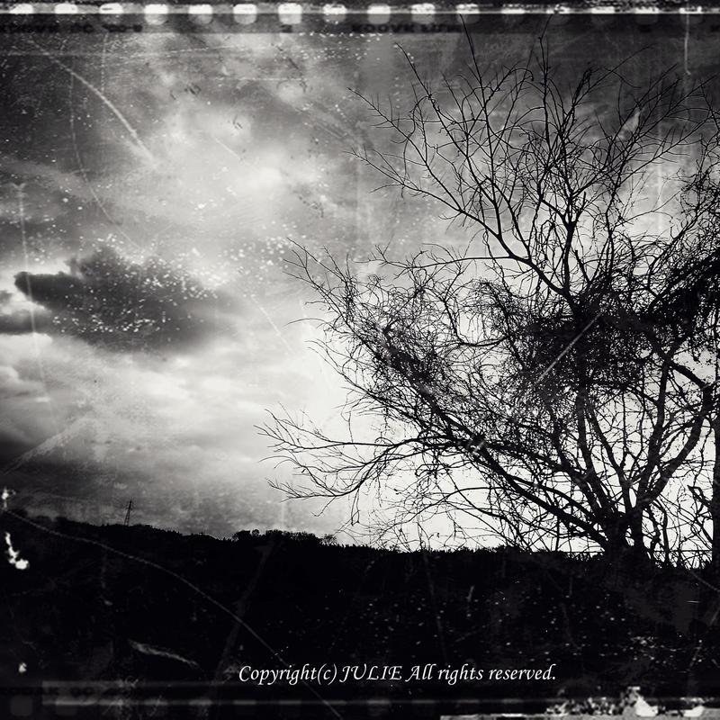 JULIE's Photo Monochrome-293