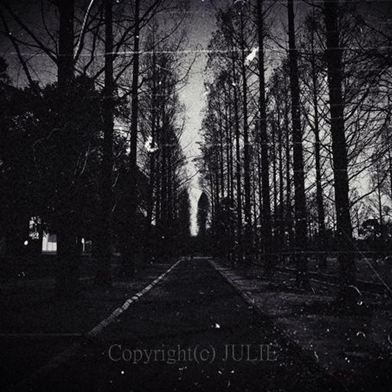 JULIE's Photo Monochrome-312